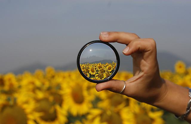 Si los filtros cumplen su función, ayudan a comprender la realidad.