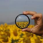 Los riesgos de una información sin filtros