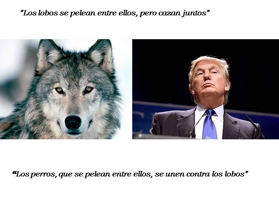 Perros y lobos 2